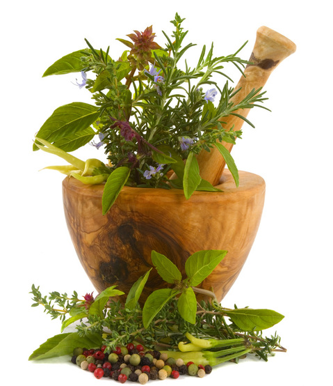Herbs in wooden mortar and pestle