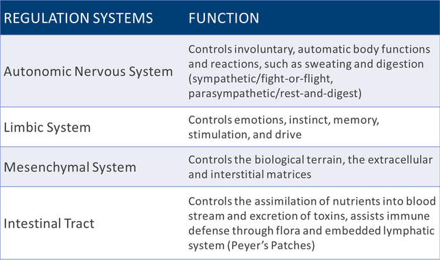 Chart of Regulation Systems and their function