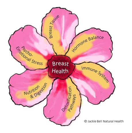 The 6 Facets of Breast Health by Jackie Bell Natural Health