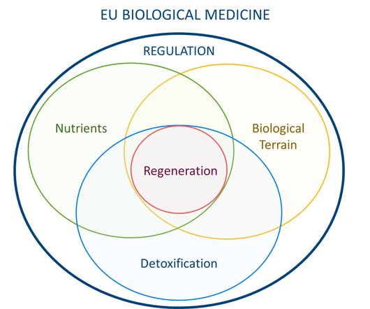 Diagram of EU biological medicine with regeneration connected to the biological terrain, nutrients, and detoxification